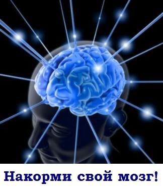Картинка как работает наш мозг. питание мозга