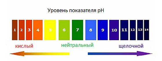 PH-balans. Таблица кислотности